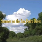 Summer_on_San_Pedro_video